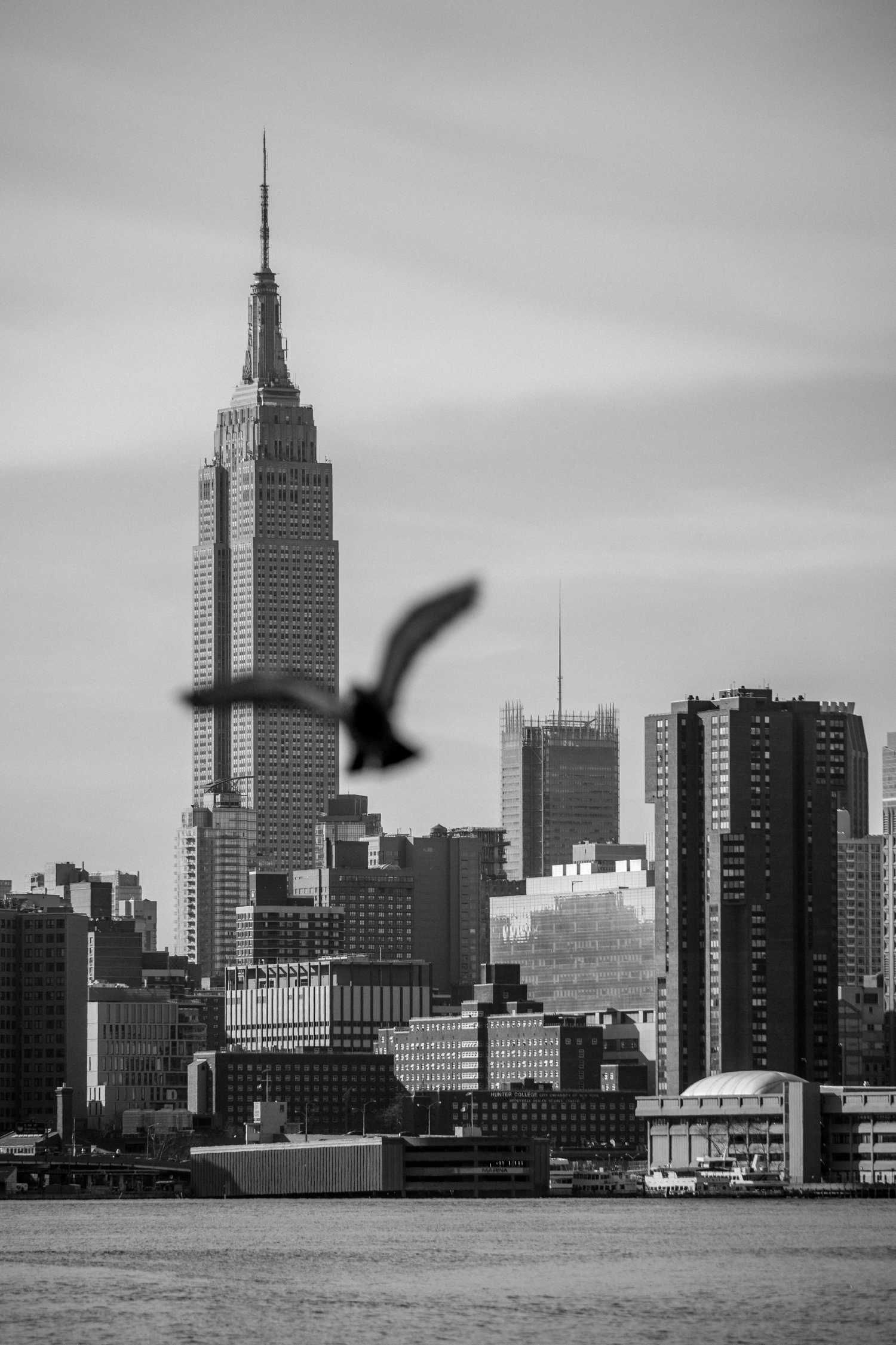 New York City Empire State