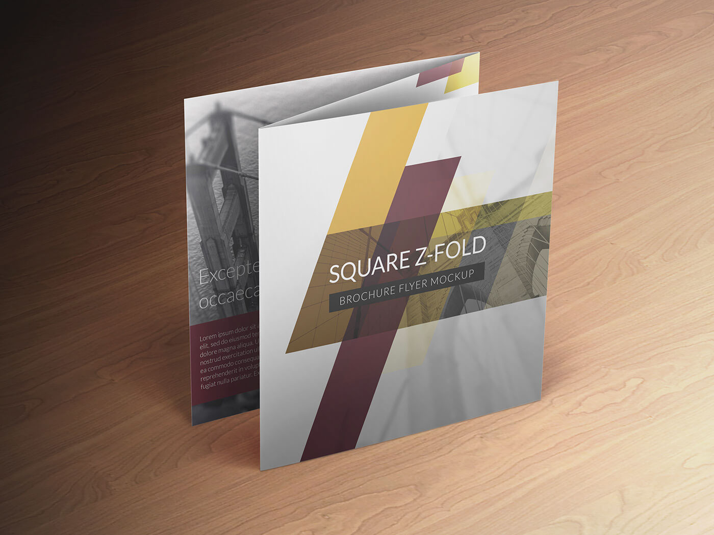 square z fold brochure mockup on behance
