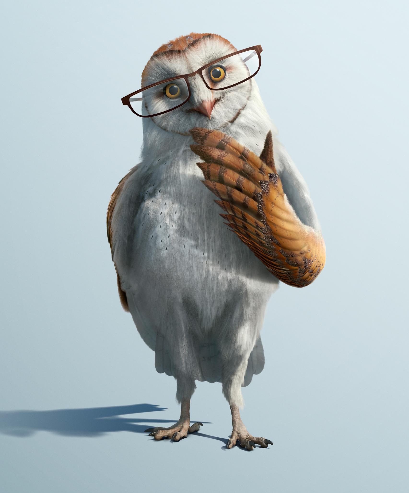 Умная сова смешные картинки