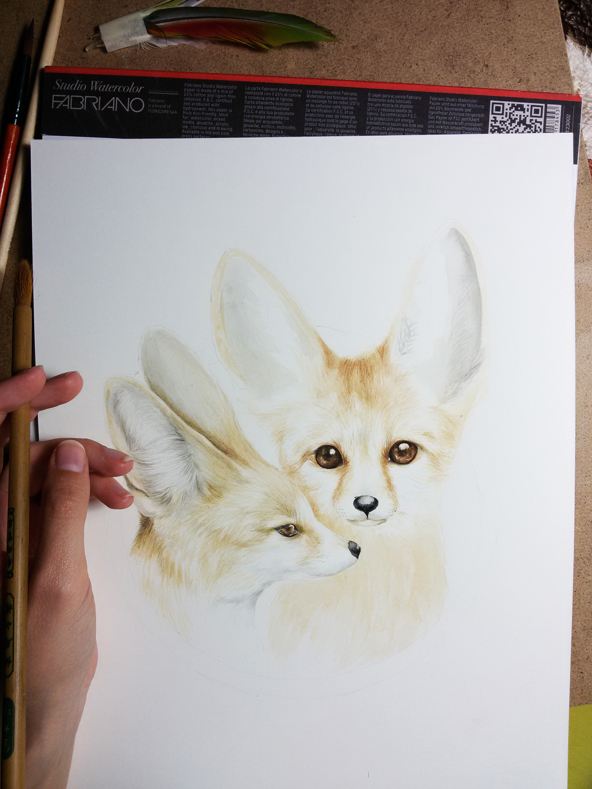 fennec foxes by Marchebbana on Behance