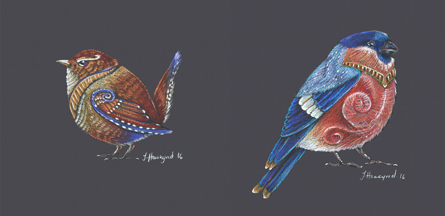 Coloured pencil illustration of a Wren and a Bull finch