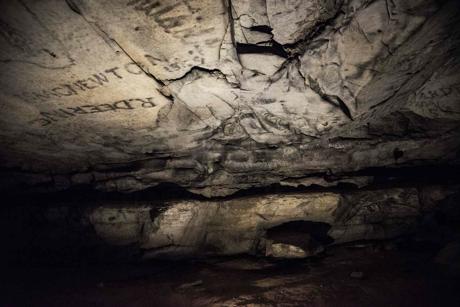 mammoth cave black singles Mammoth cave national park preserves the cave system and a part of the green river valley and hilly country of south central kentucky this is the world's longest known cave system, with more than 400 miles (643 km) explored.
