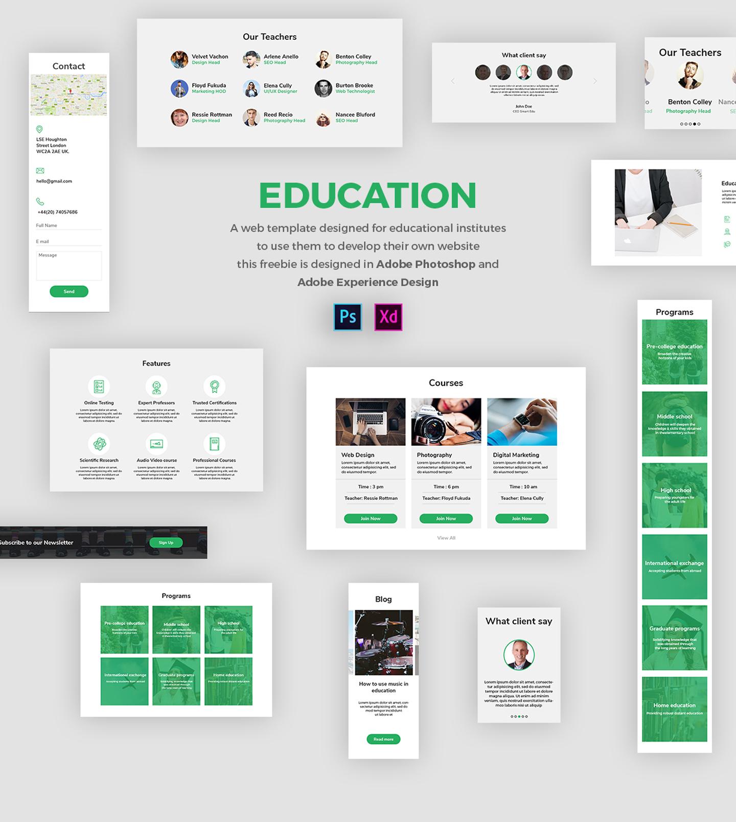Adobe XD Freebie-EDUCATION on Behance