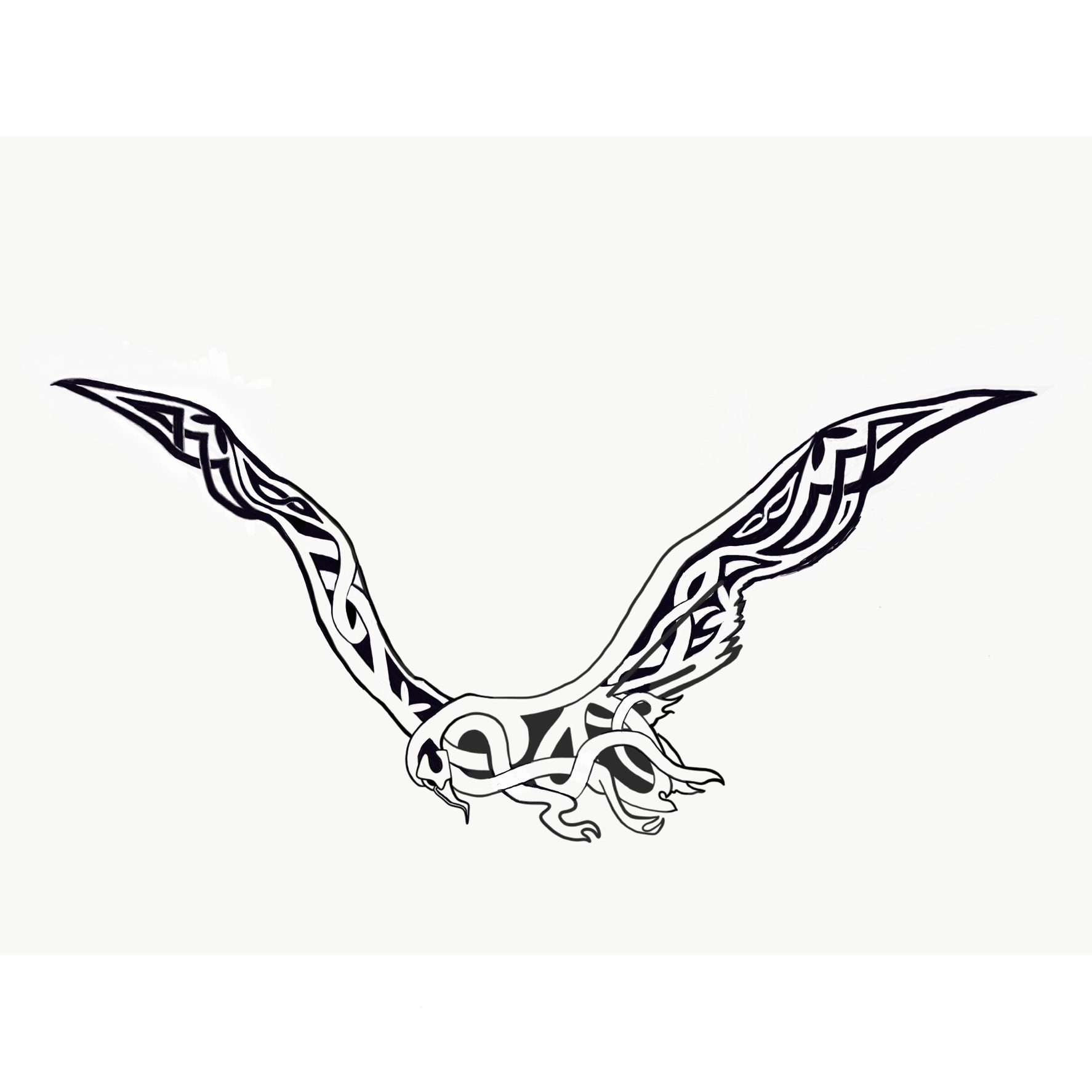 Albatross Tattoo Design On Behance