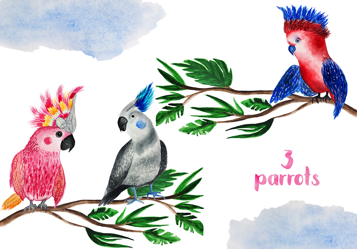 Tropical Party Watercolor Parrots On Behance Parrot Origamiorigami Macaw Parrotorigami Diagram Thank You For Watching
