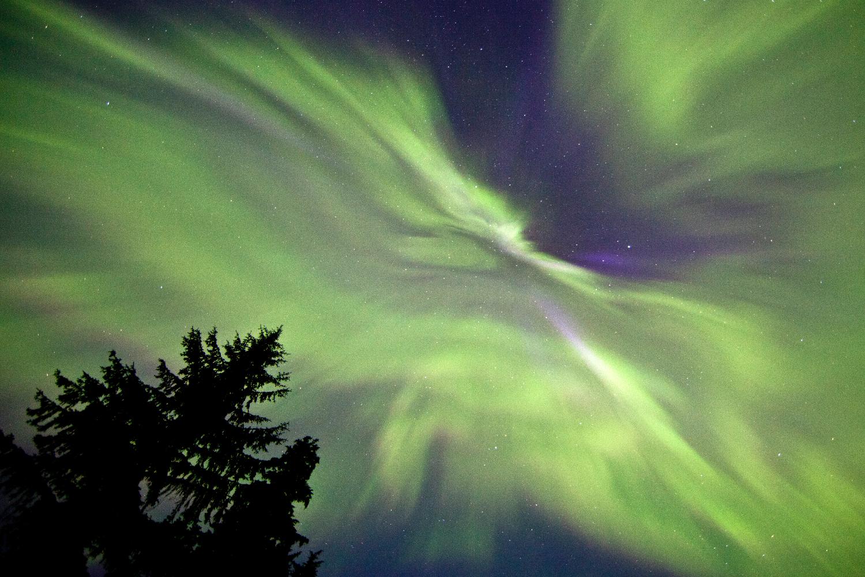 The Aurora Borealis, Terrace, BC.