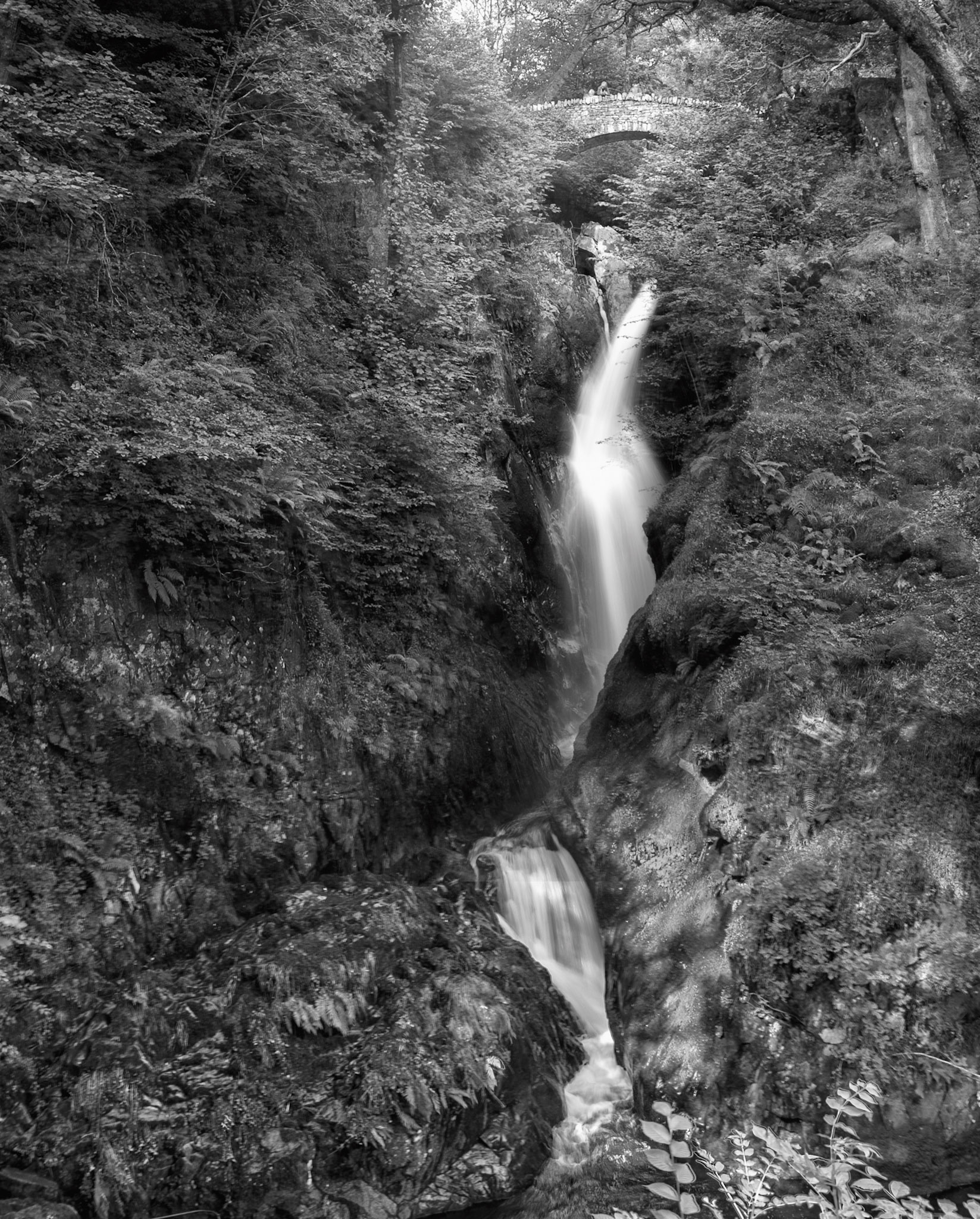 Aira Force, near Ullswater, Lakes District, England