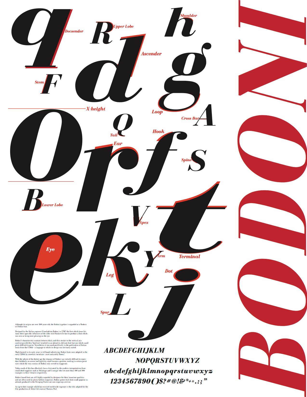 Fiona Greene - Bodoni Typeface Anatomy