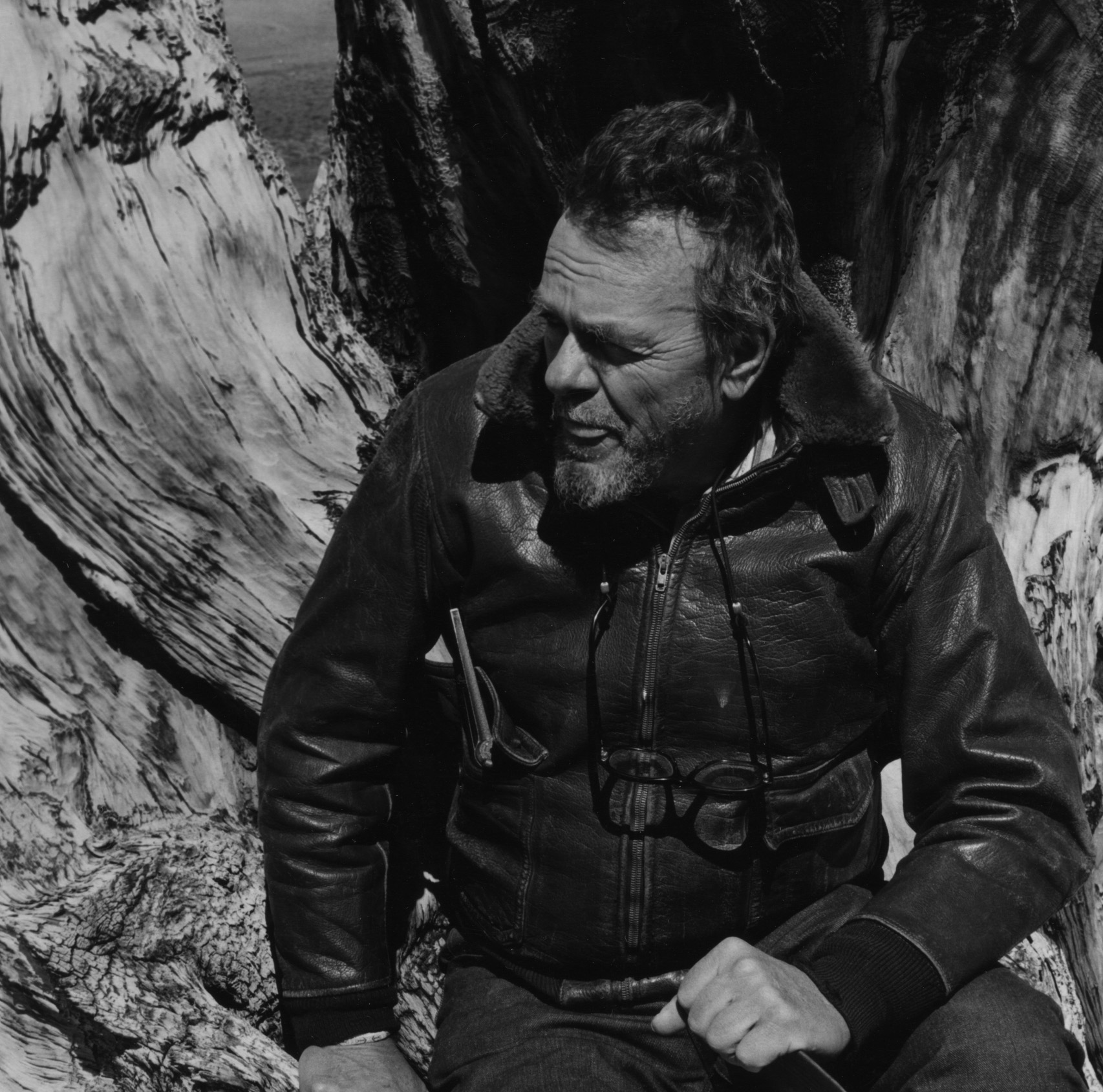 Man with a leather jacket sitting infront of an old bristle cone pine trunk