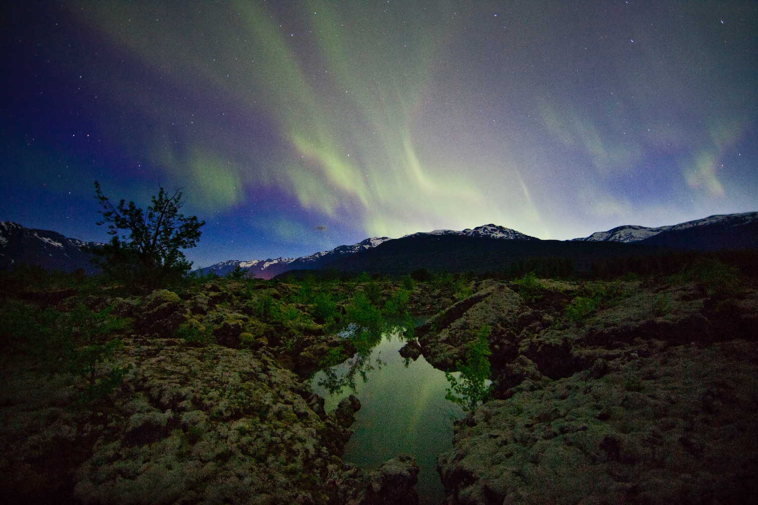 The aurora borealis over the Nisga'a Memorial Lava Beds north of Terrace, BC.