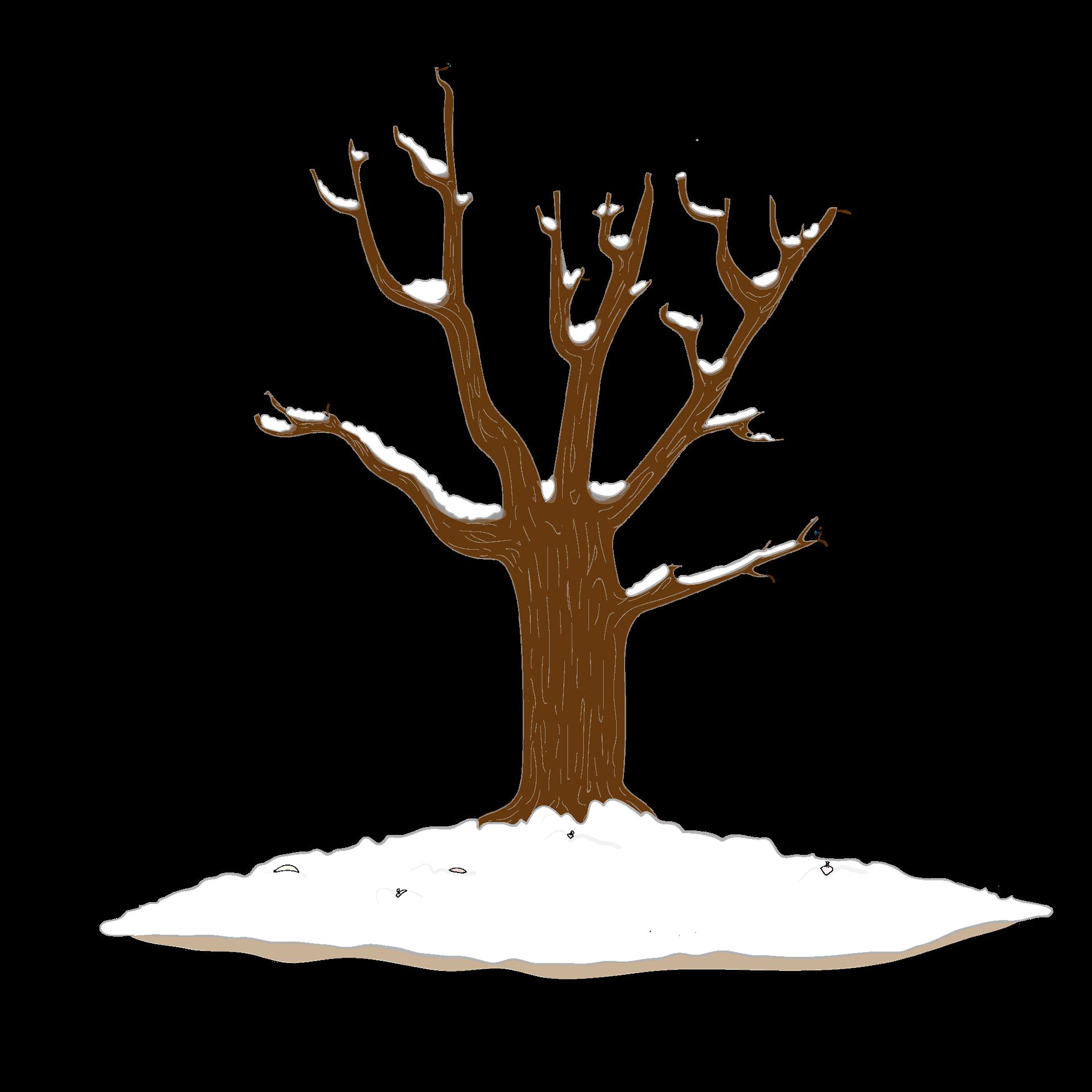 зимнее дерево картинки для оформления