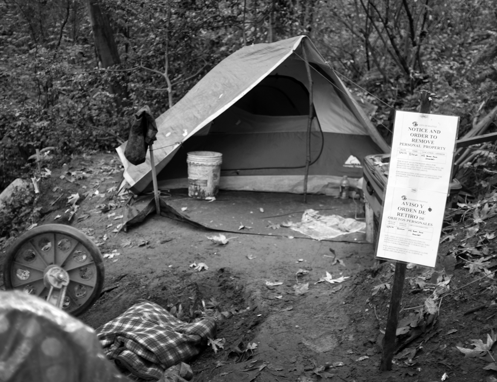 "A sign ""Notice and Order to Remove"" in front of a tent surrounded by detritus in a woody area"