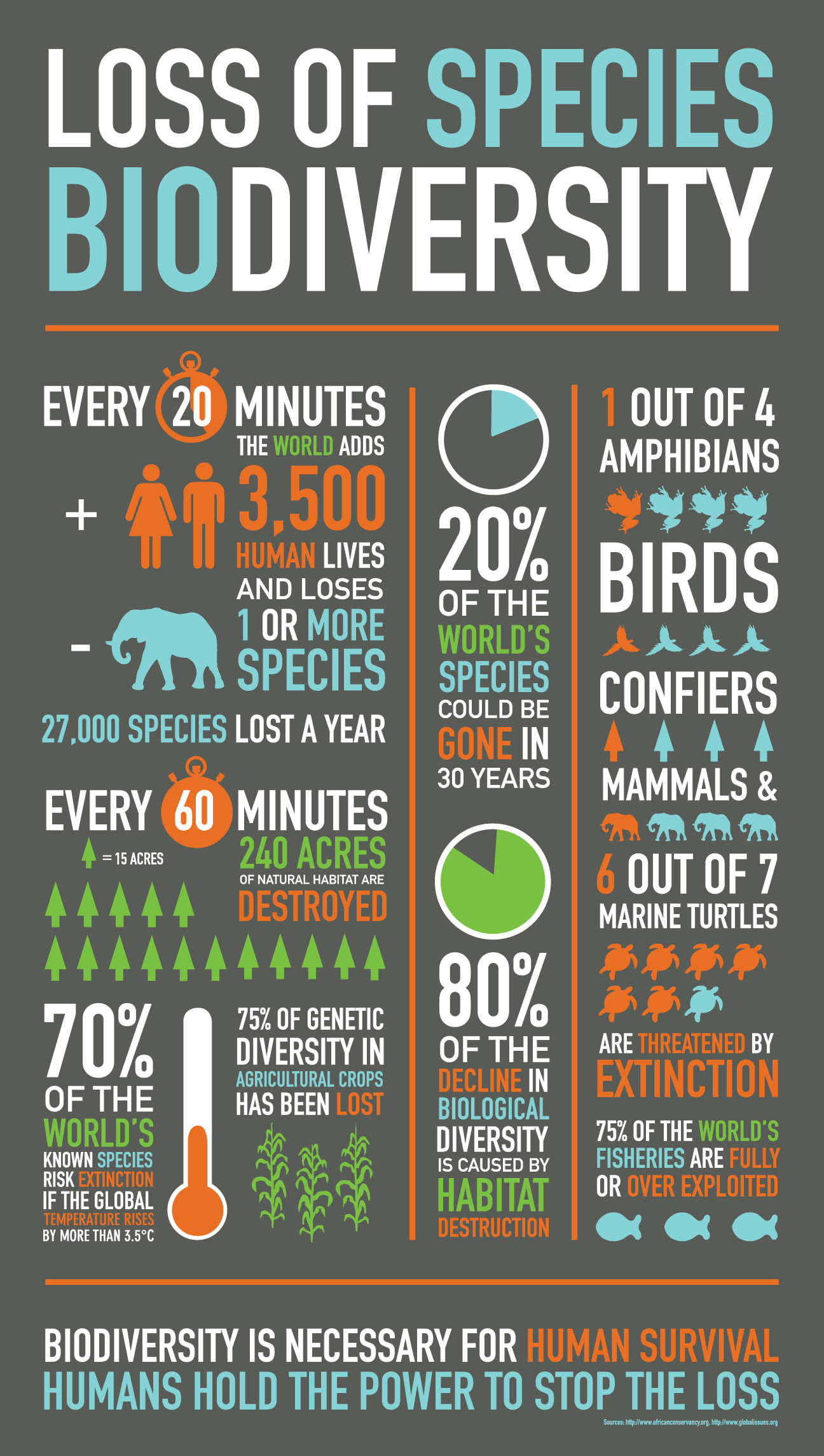 Loss of Biodiversity [Infographic] | ecogreenlove