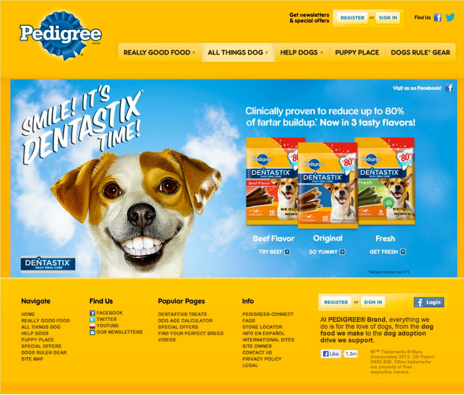 Images of Pedigree Dog Age Calculator - #rock-cafe