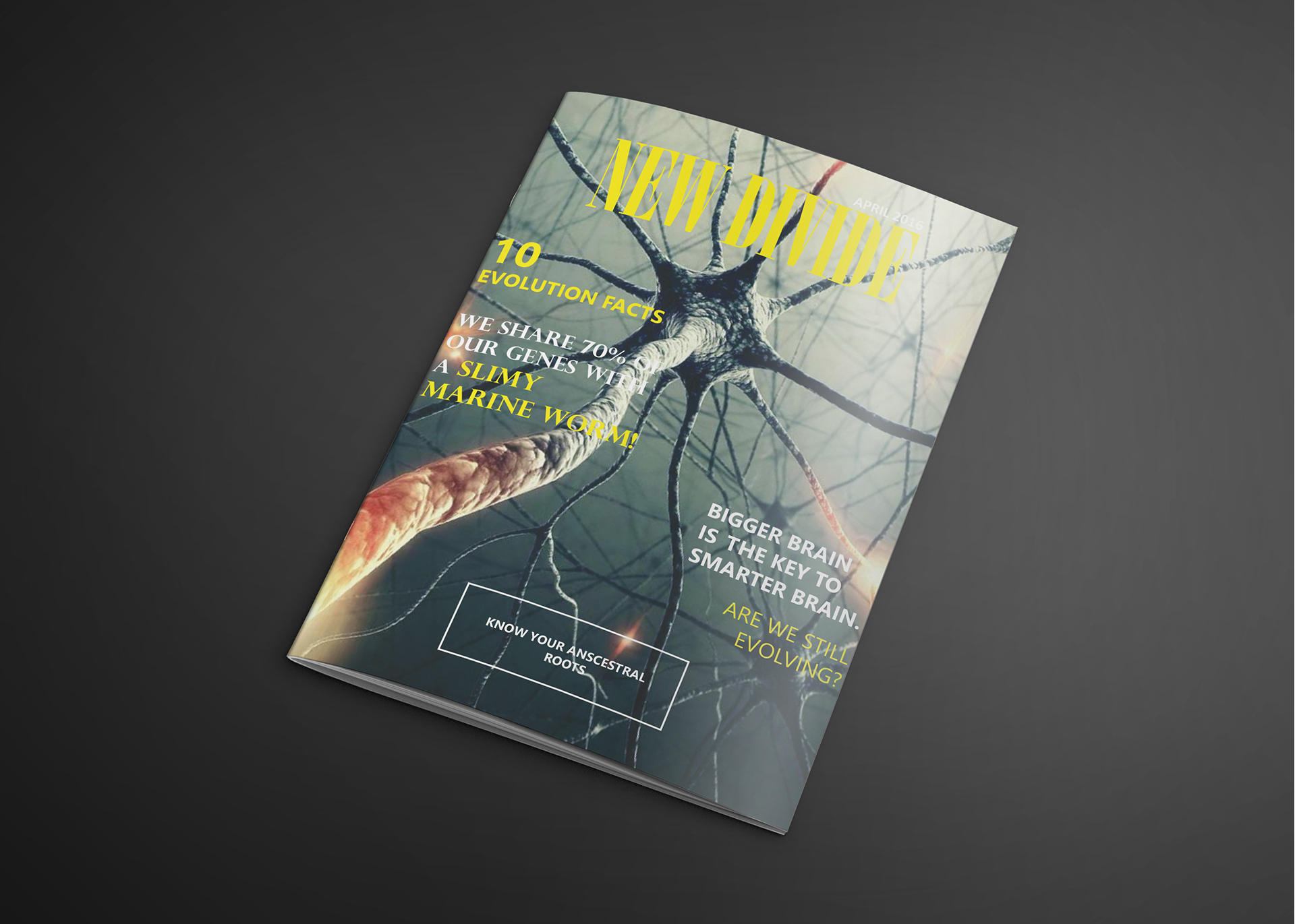daily southt science magazine - HD1920×1371