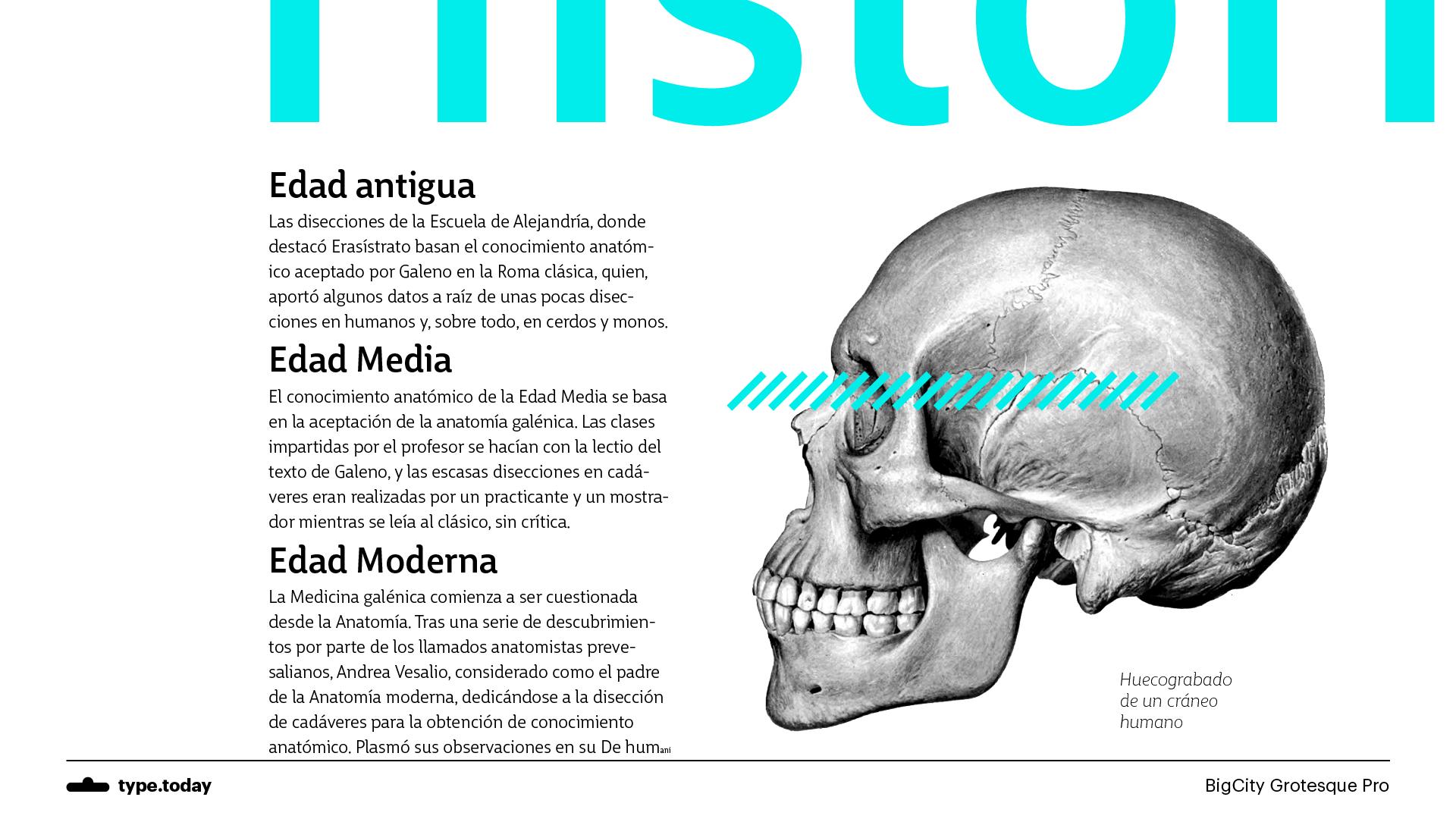 Excepcional Quien Es El Padre De La Anatomía Moderna Fotos ...