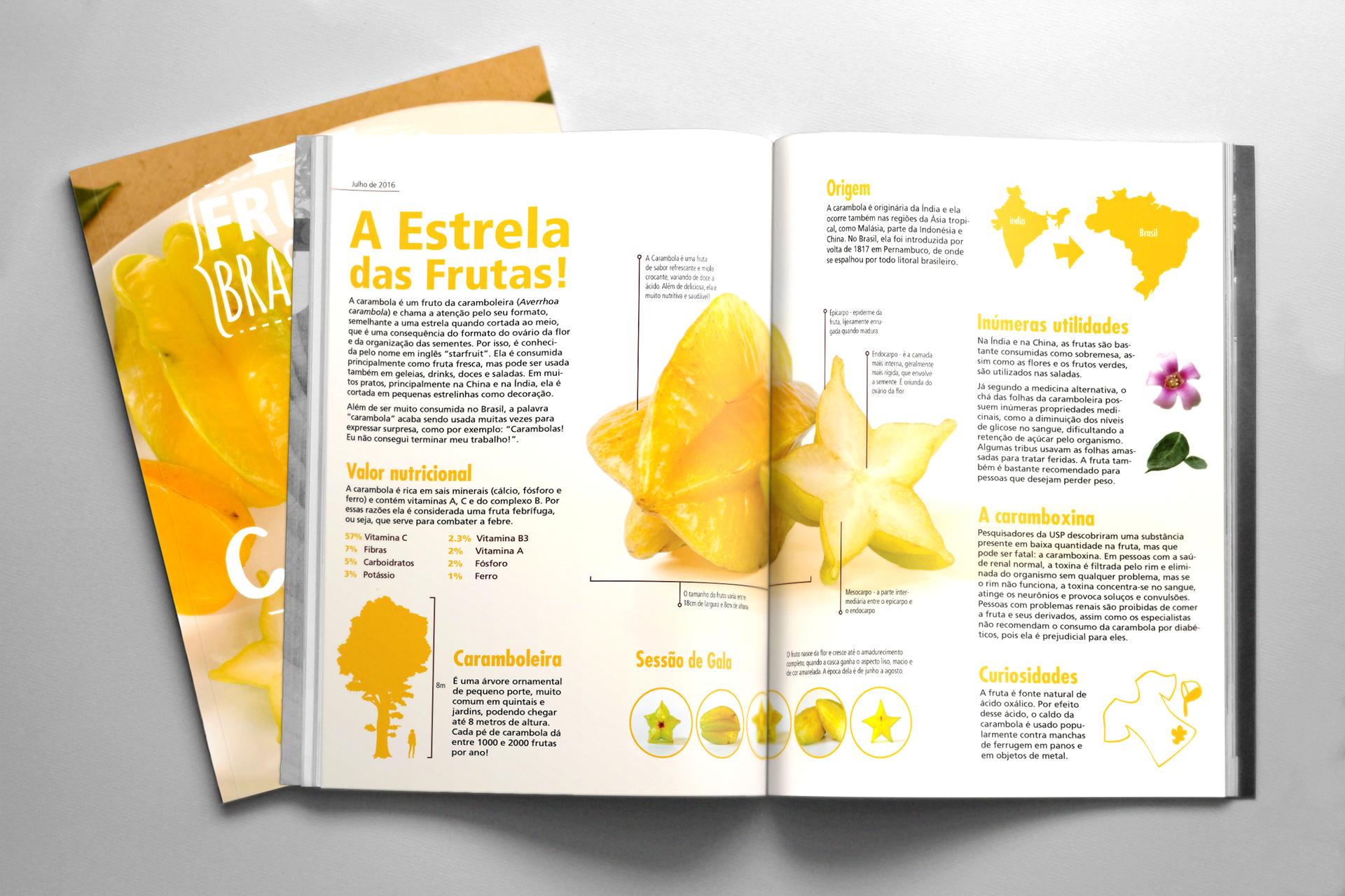 A Fruta Carambola Serve Para Que infográficos - 2016 on behance