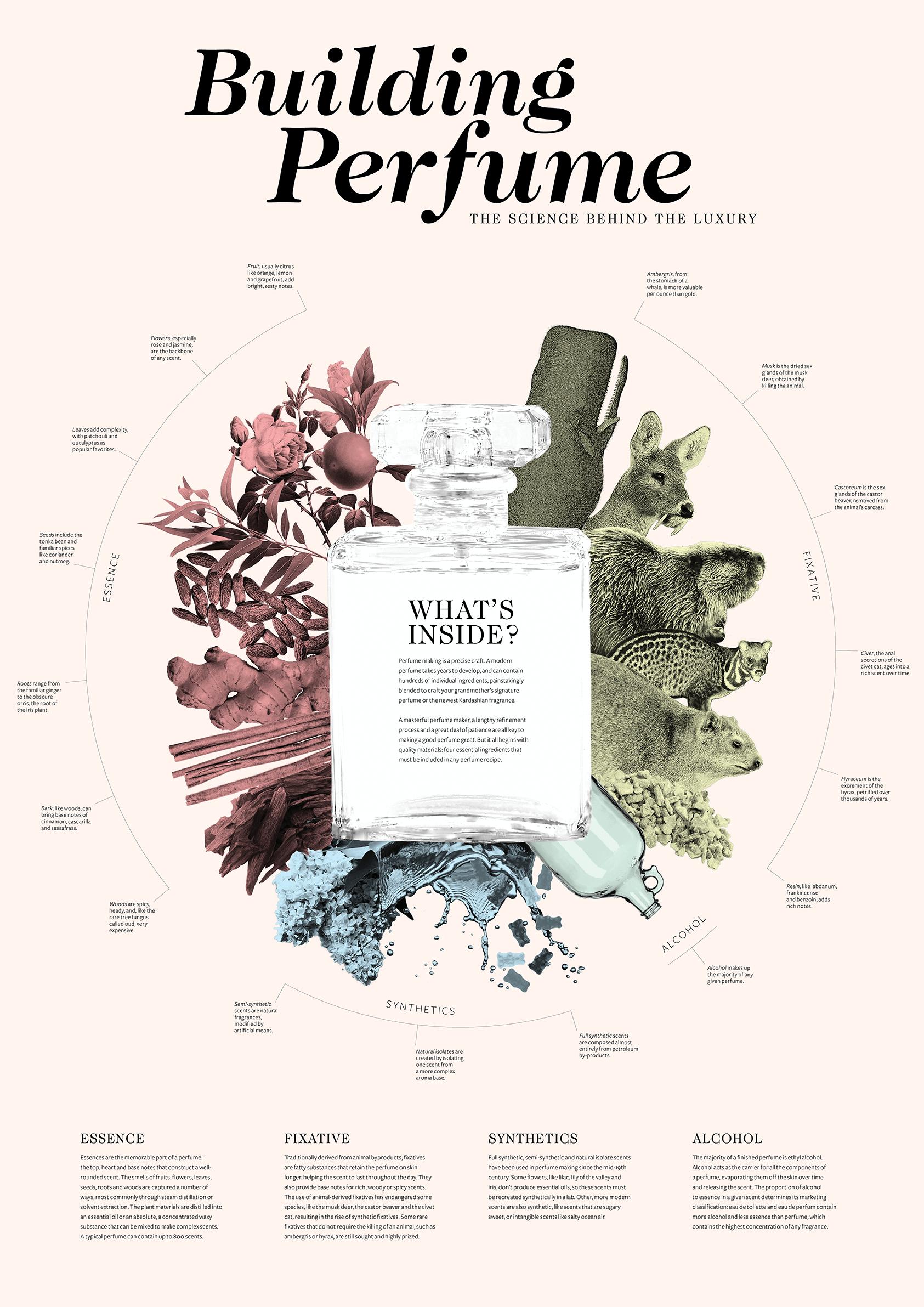 Building Perfume on Behance
