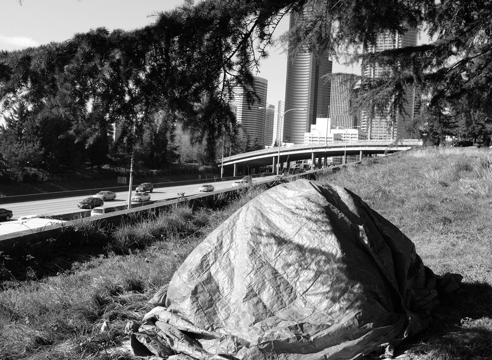 A tarp-covered tent over the Seattle highway and skyline