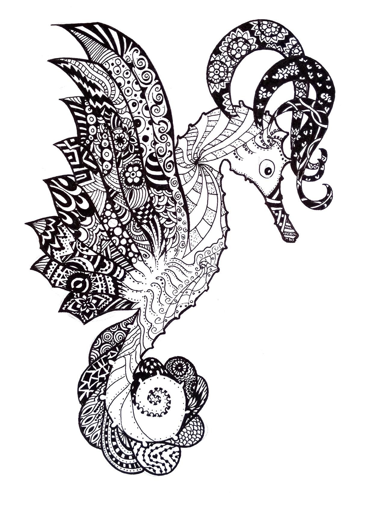 ..Sea ??horse - illustration, drawing - agama | ello