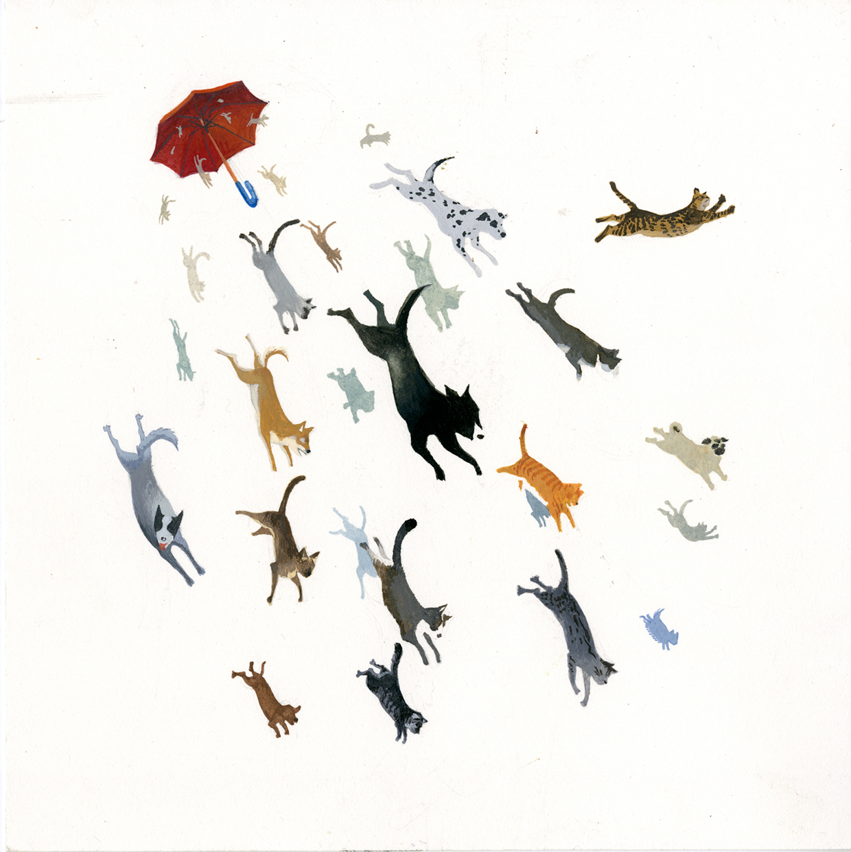 Raining Cats And Dogs Drawing Raining Cats And Dogs Was a