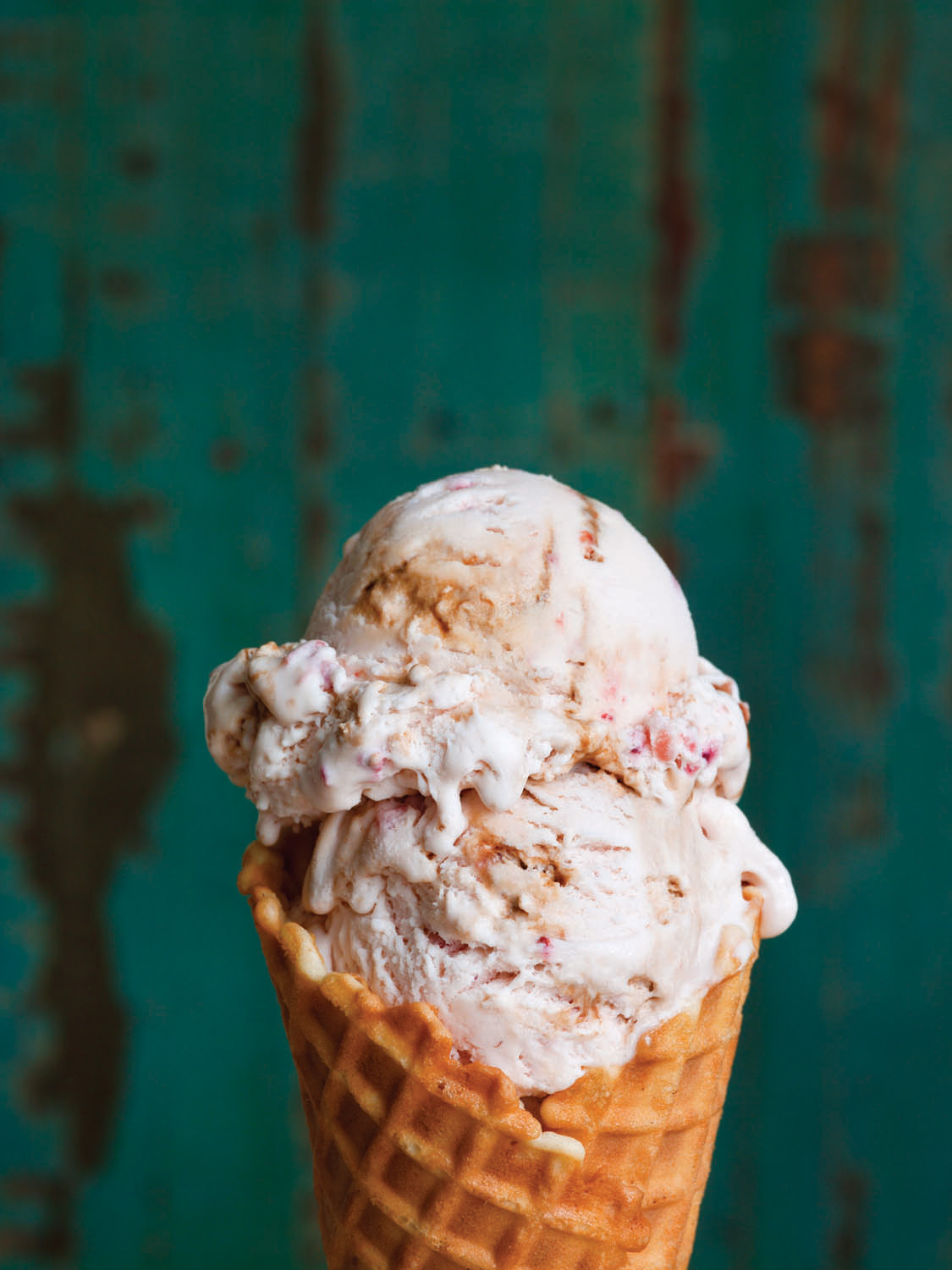 download molly moons homemade ice cream sweet seasonal