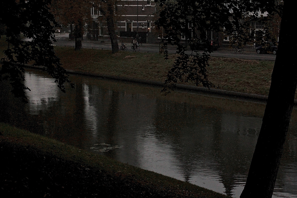 utrecht Alessandro Zir Luso-Brazilian Encounters birds canals Netherlands cathedral dom tower