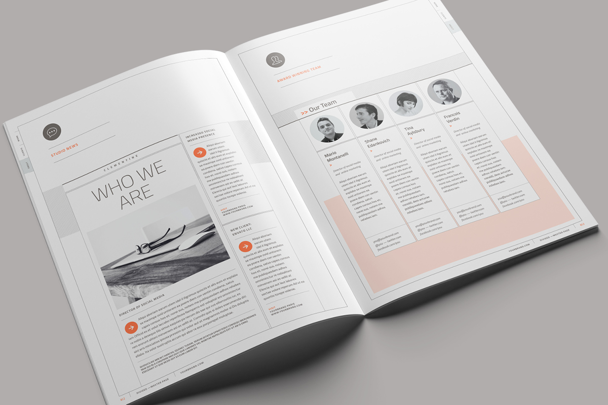 Divided Suisse grafik Proposal quote brief brochure infographic agency pitch agency proposal