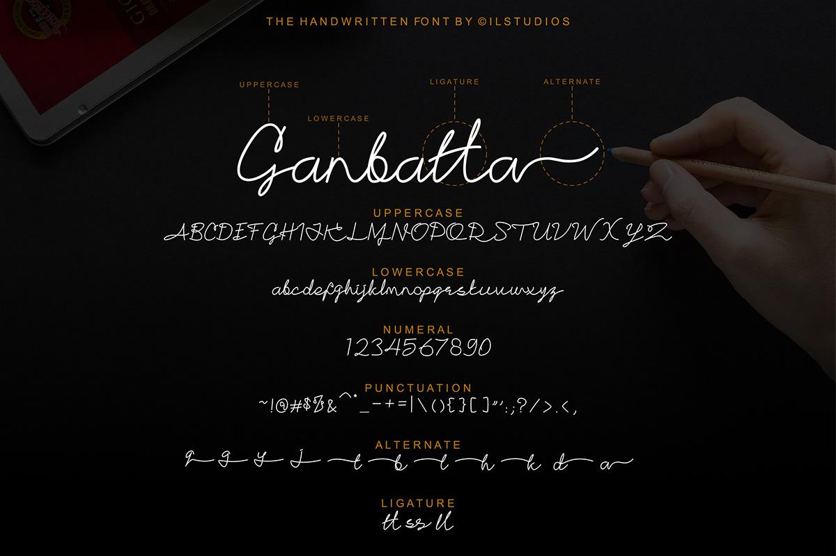 font script font lettering hand writting monoline ligature hand written HAND LETTERING