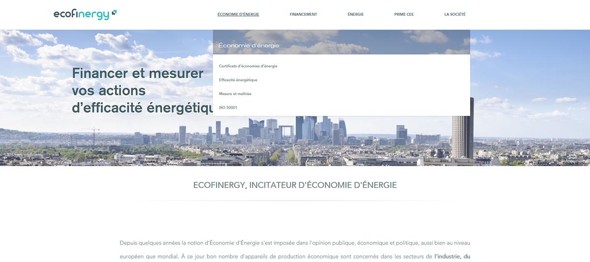 Mercioner Branding design Webdesign ecofinergy artistic direction print design