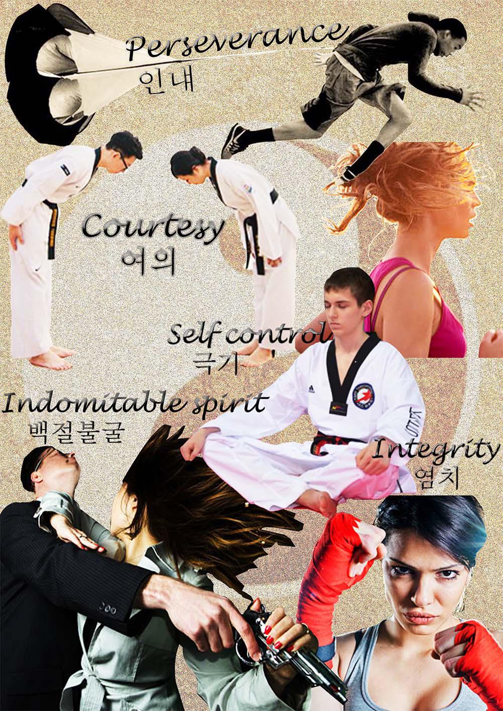 Fashion  Sportswear taekwondo