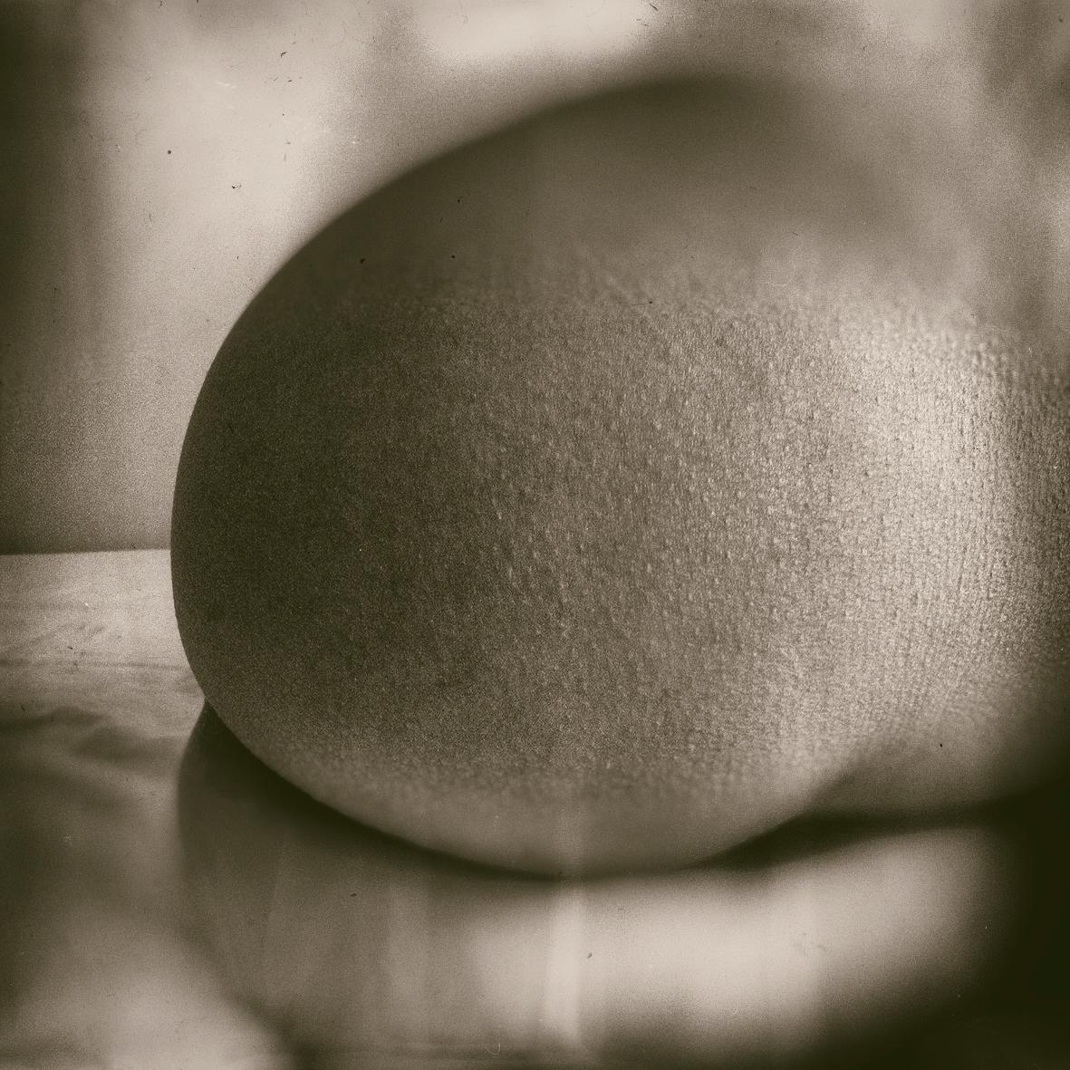 body art Photography  analog woman fragment abstract minimal