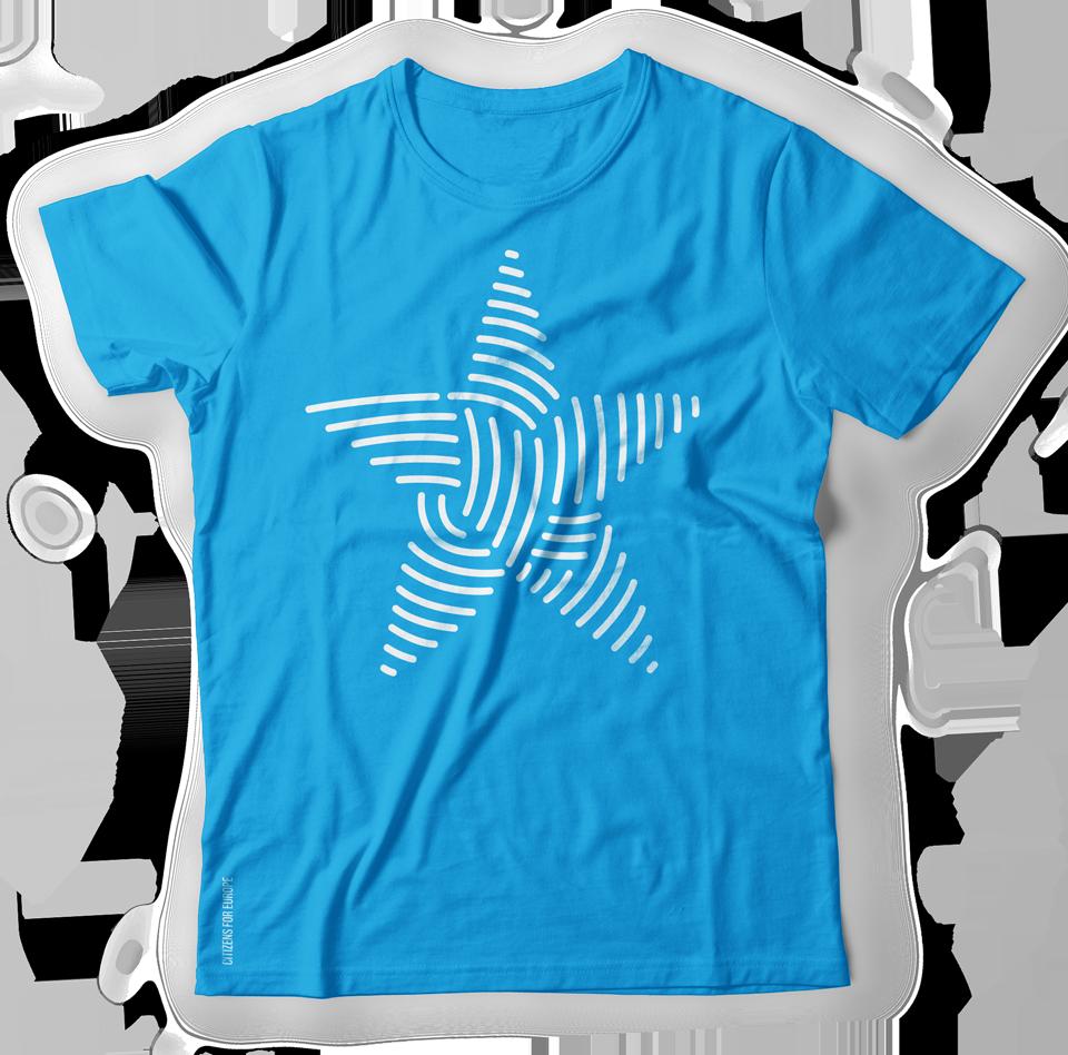identity logo blue Web wordpress