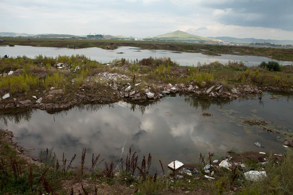 wasteland bashang china trash grasslands horses Greenpeace savetheworld