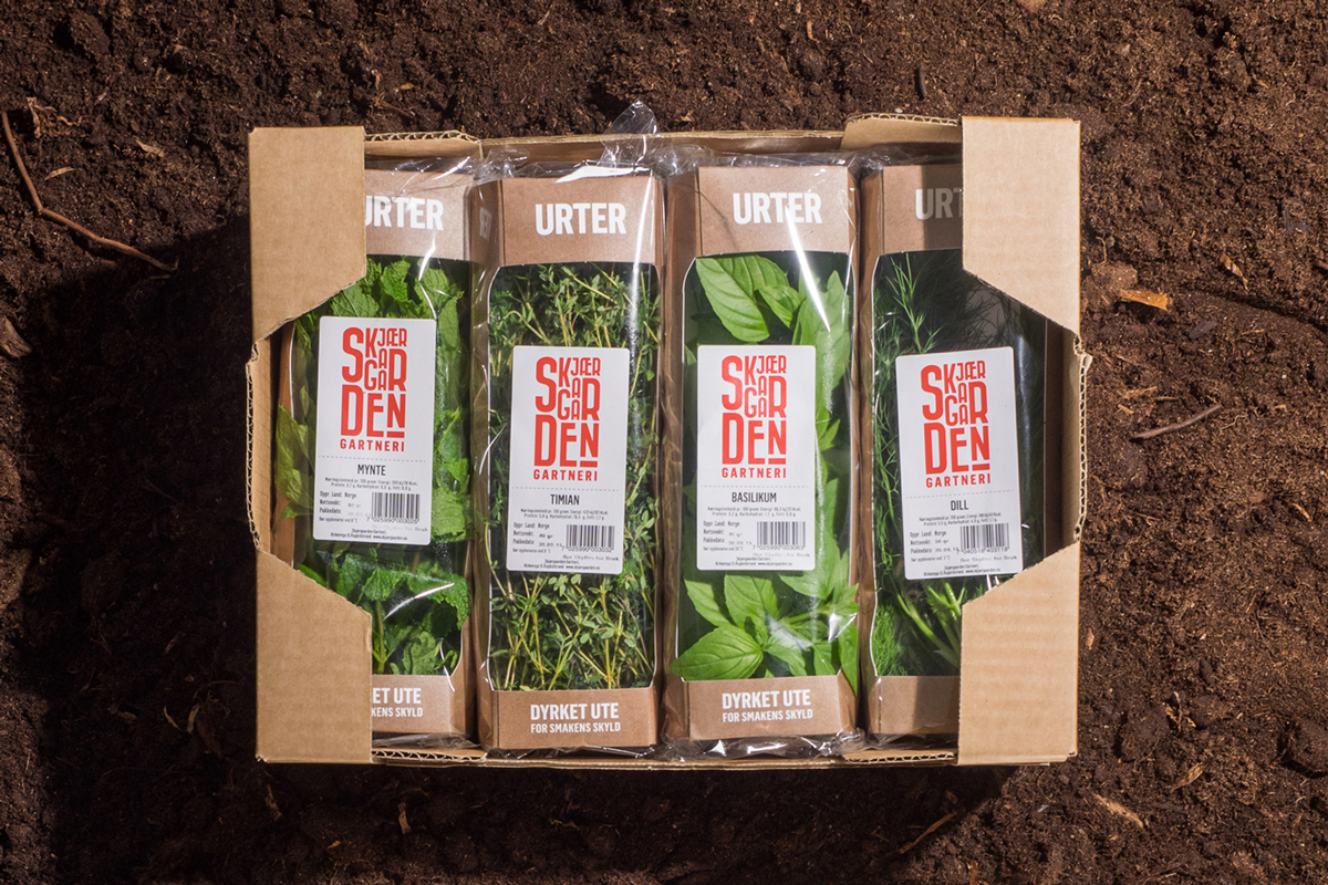 panorama design Packaging herbs vegetables identity