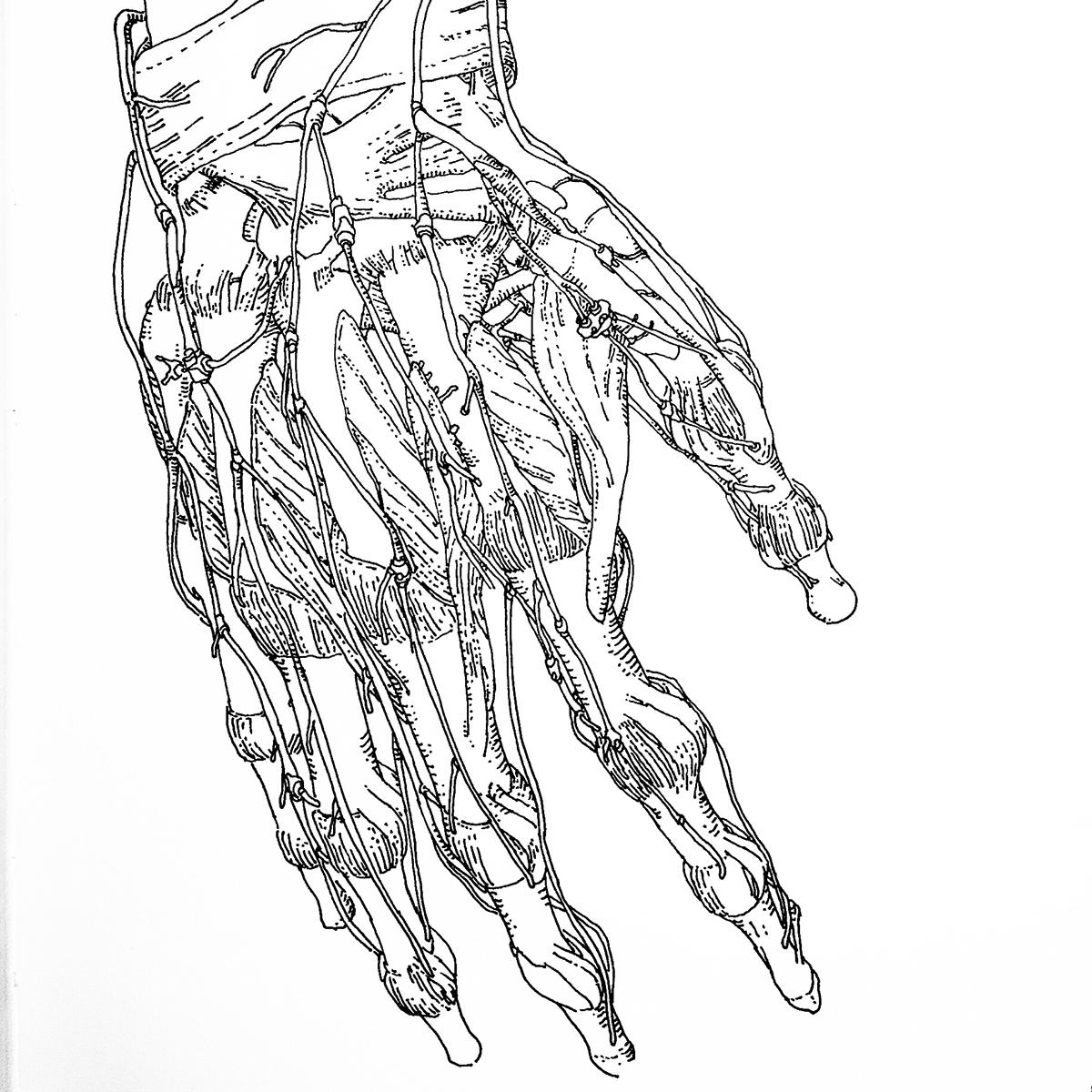 Talos Body Parts Sketches On Behance