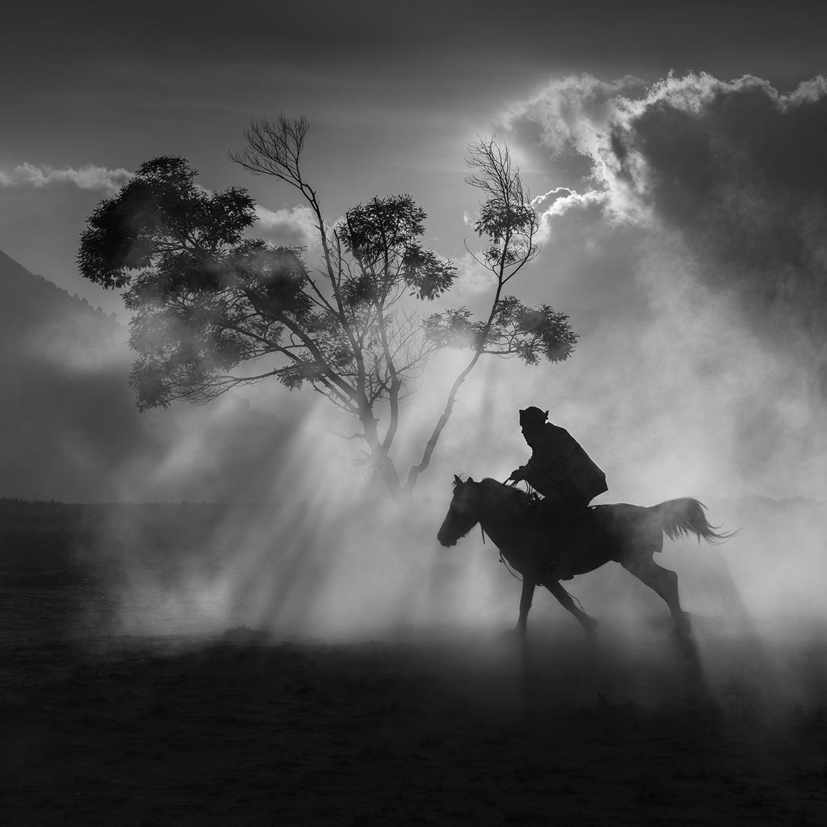 Image may contain: horse, abstract and smoke