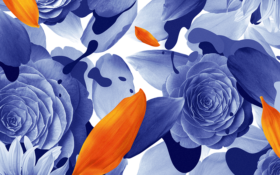 Patterns art colors Flowers plants type pattern abstract digitalart Nature blue pink experimental lines organic