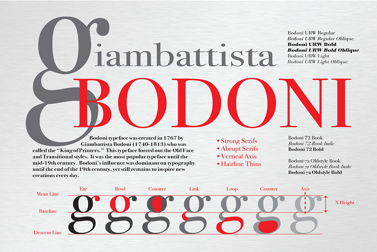 Anatomy of the Letter \