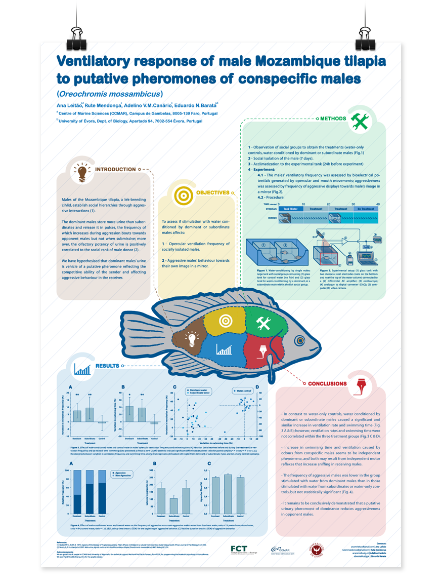 scientific poster on behance