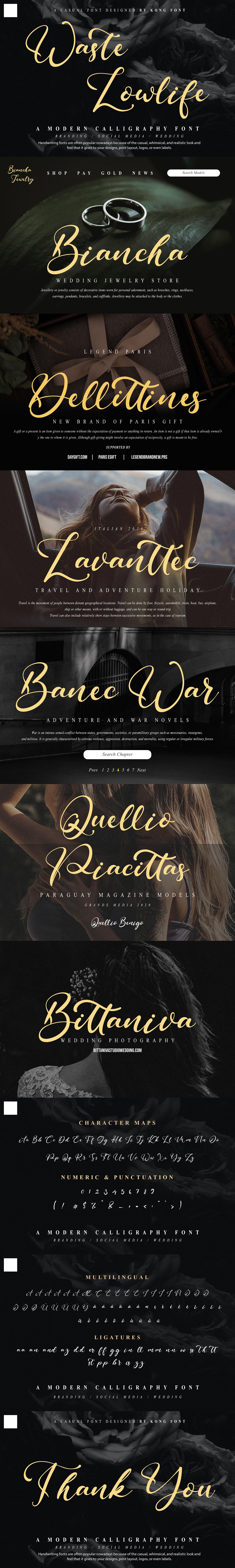branding  Calligraphy   designfont font jewelry lettering Logotype modern Script waste lowlife