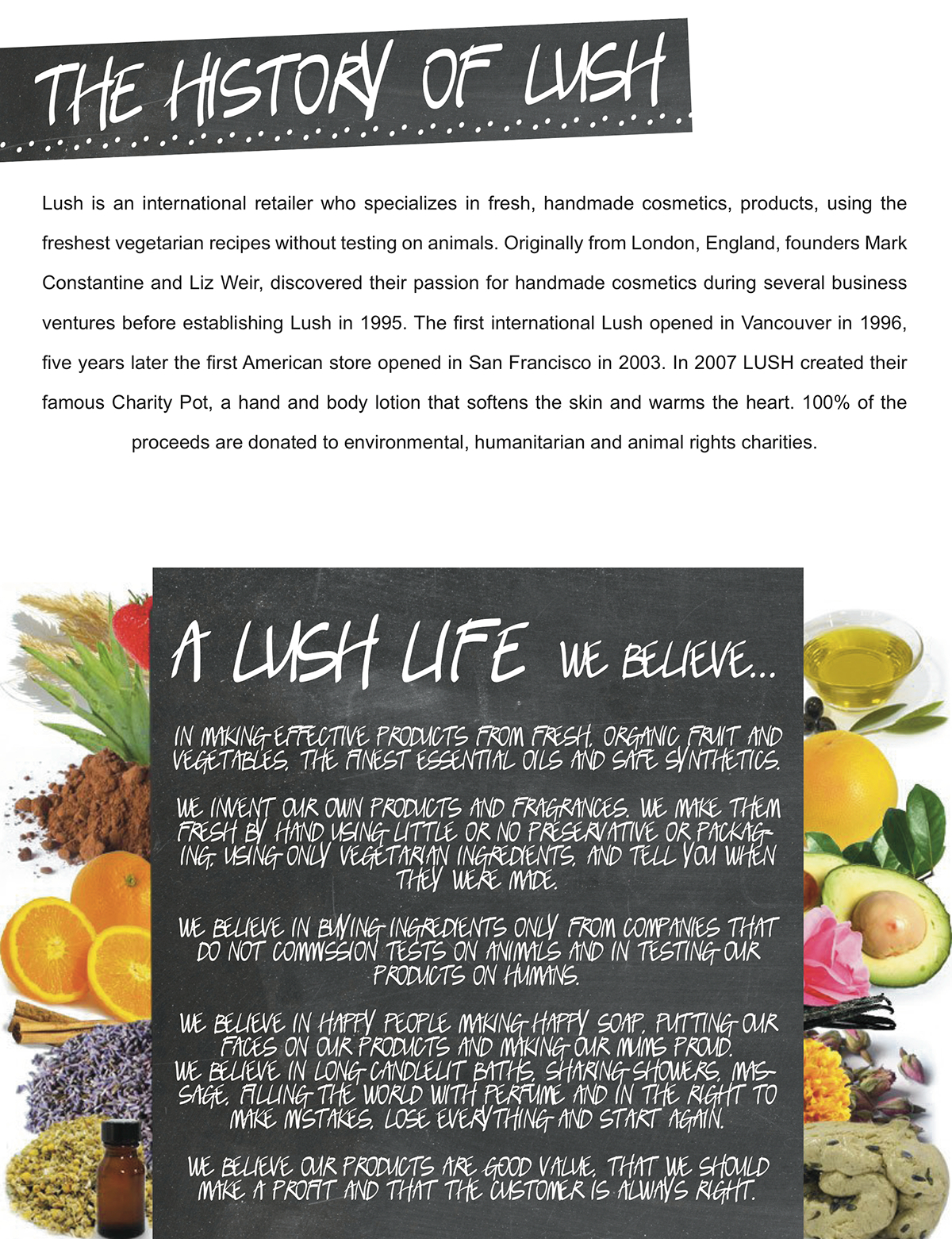 creative brief lush lush cosmetics cosmetics marketing   fashion marketing interactive design