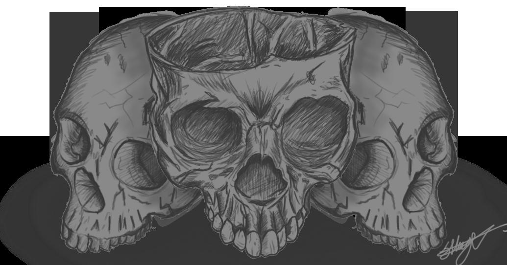Skull Sketch Exercise On Behance