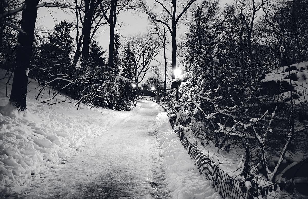 New York snowstorm empty streets black and white monochrome adobeawards