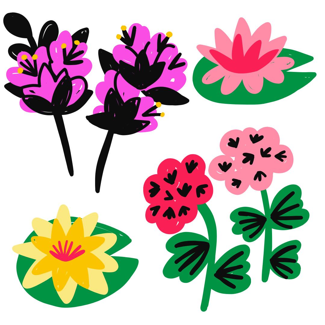Bluebells bougainvilla bush Flora floral Flowers gerbera pattern Roses spain spanish