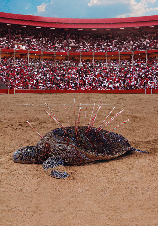 popotes straws pajilla tortuga aves oceanos ESPECIES MARINAS matar kill dano