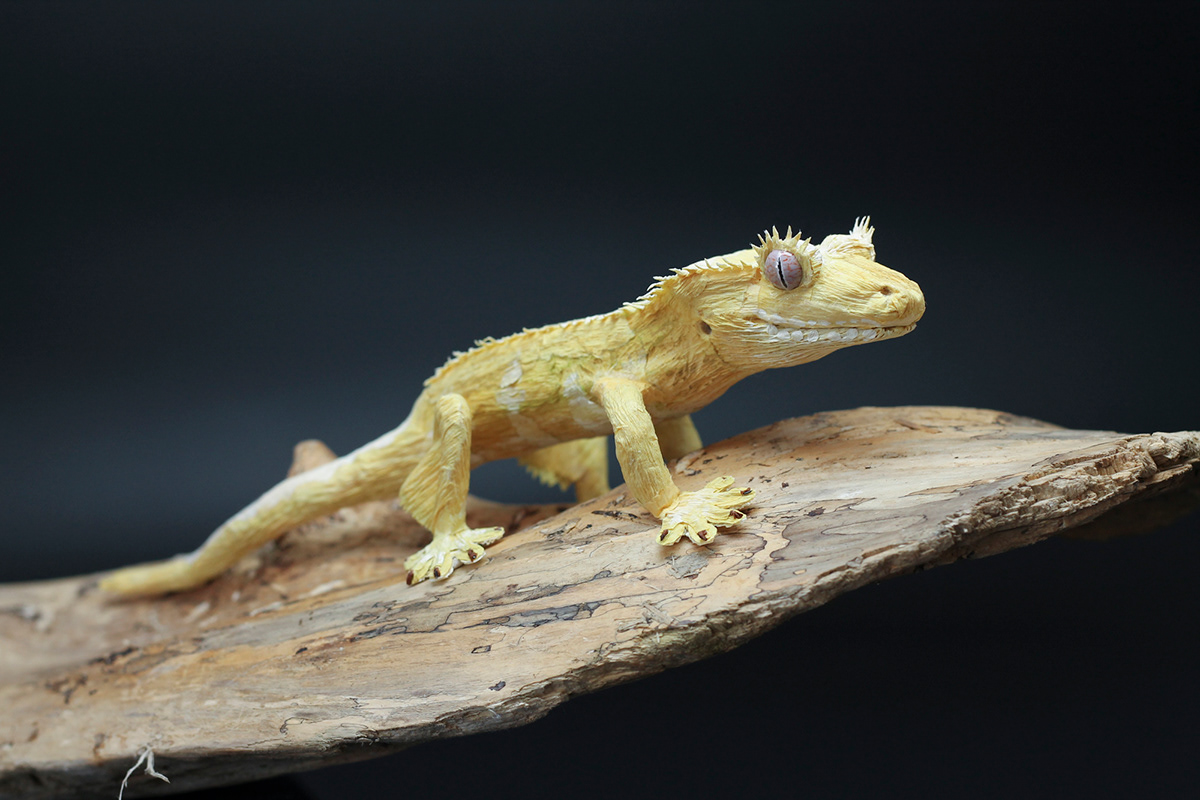 lizard gecko reptile paper art paper sculpture set design