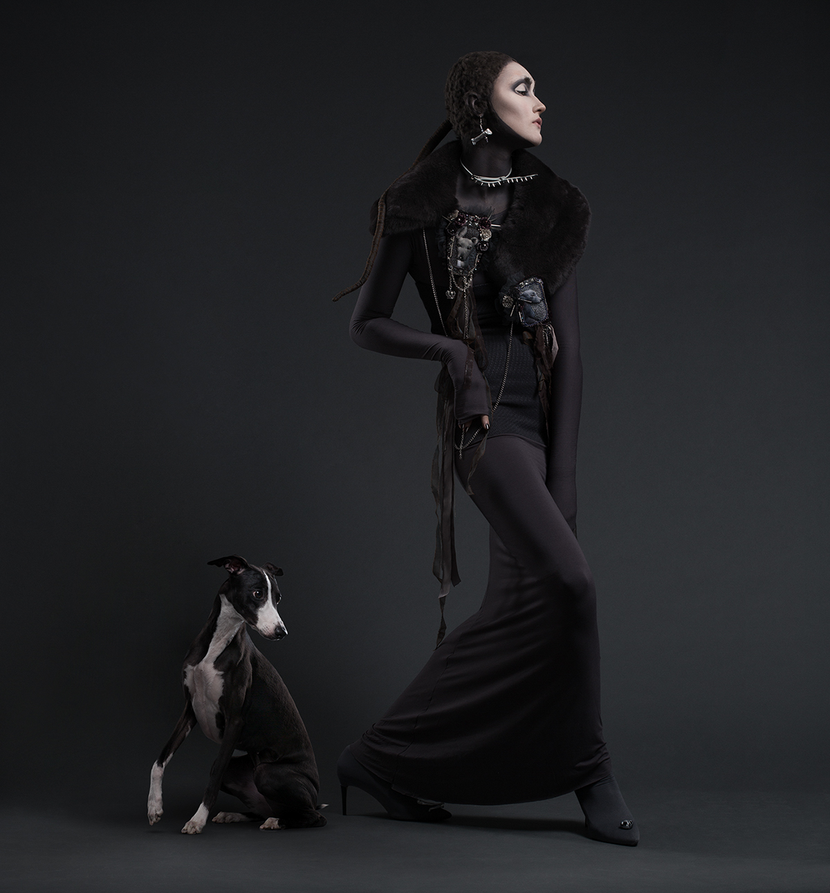 dogs dogs in fashion Style fashion design Costume Design  art make-up face-art