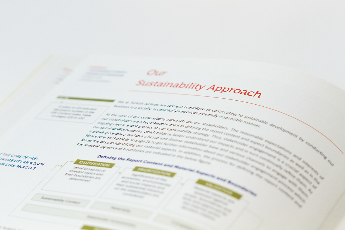 design infographic Layout Icon ILLUSTRATION  vector Sustainability report ANNUAL editorial