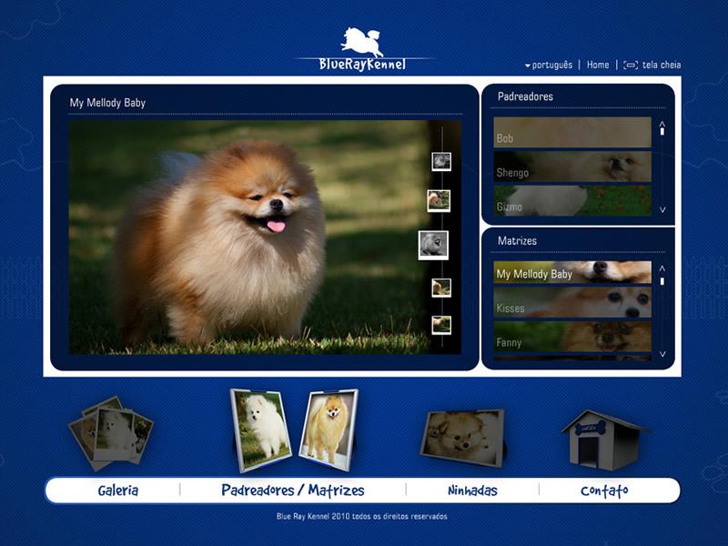 Flash Website Web Actionscript AS3 xml php mysql glassmedia media